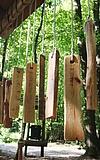 Der Hartig-Walderlebnispfad