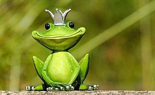 Kunibert der Riesenfrosch