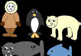 BücherRasselbande: Ganz schön schlau, Billi Seehund