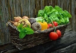 Der Garten für alle Sinne – sähen, pflanzen, gestalten
