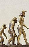 Auf den Spuren der Steinzeitmenschen