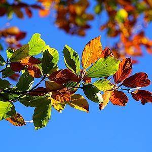 Noch freie Plätze im Herbst- und Winterferienprogramm