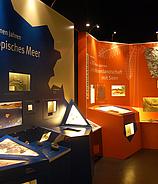 Naturhistorisches Museum Mainz
