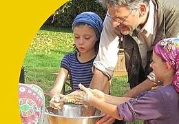 Besucherlabor: Mauerbiene, Sandbiene & Holzbiene
