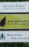 Wild im Park – Ferienspiele für Hanauer Kinder
