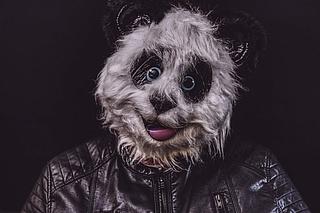 Kreativ-Werkstatt: Tierische Faschings-Masken