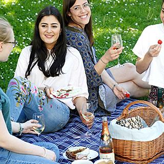 Picknick beim Museumsuferfest