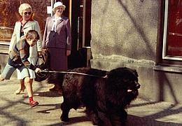 Der Junge mit dem großen schwarzen Hund