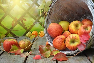 Apfelsenf hausgemacht