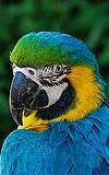 Sommer-Zooferien: Kleine Tierpfleger im Sommer