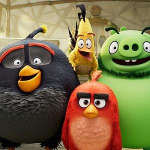 Die ANGRY BIRDS kommen zurück ins Kino
