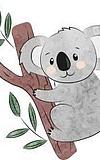 Koalas - Neue Pfadfindergruppe für Schulanfänger
