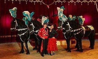 Circus Alberti