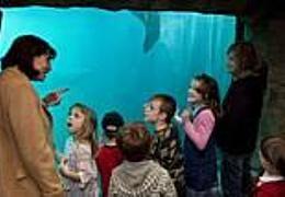 Ferien im Zoo: Tierische Erlebnisse