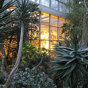 Herbstferienprogramm im Palmengarten