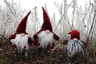 Zwerg Funny und der vergessene Nikolaussack - mit Lagerfeuer im Anschluss