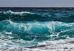 Umweltauswirkungen der Nutzung mariner Ressourcen in der Tiefsee