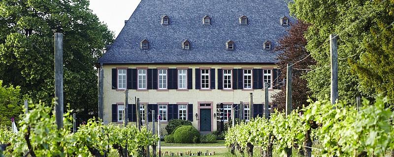 Weinlounge 1141-Weingut Baron Knyphausen