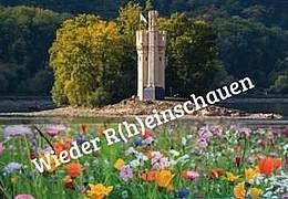 10 Jahre Landesgartenschau