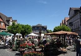 16. Büdinger Gärtnermarkt