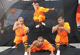 Die Meister des Shaolin Kung Fu - The Revenants Tour 2017