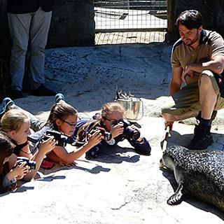 """Vernissage: """"Bitte lächeln - Kinder fotografieren Zootiere"""""""
