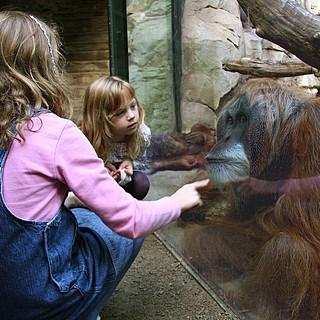 160 Jahre Zoo Frankfurt