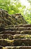 Führung mit dem Kranichsteiner Schlossgespenst