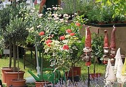 Herausspaziert! Bio, Garten, Messe – Natürlich Draußen