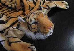 Keine Party für den Tiger
