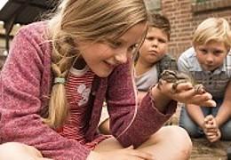 Kinderkin - Hilfe, unser Lehrer ist ein Frosch!