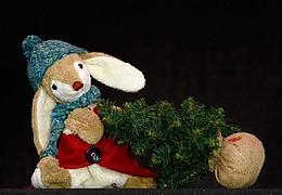 Kuschel hilft dem Weihnachtsmann