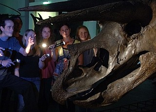 Nachts im Senckenberg Museum - Taschenlampenführung für Kinder, Jugendliche und Erwachsene