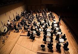 Orchester hautnah - Walzer, Johann Strauß und Fasching