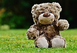 Teddybärenkonzert: Der Grüffelo