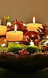 Weihnachten im Palmengarten
