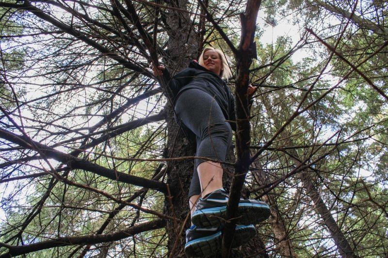 Klettergurt Baumklettern : Walderlebnistag u mit baumklettern klexwerk